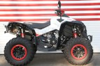 can-am 650 XXC Renegade